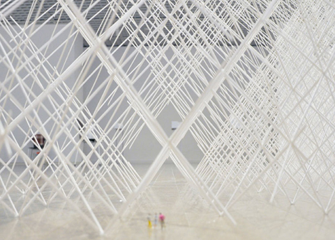 Ryuji Nakamura: cornfield (Installation at the National Museum of Modern Art Tokyo, 2010)