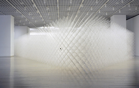 Ryuji Nakamura: cornfield (Installation)