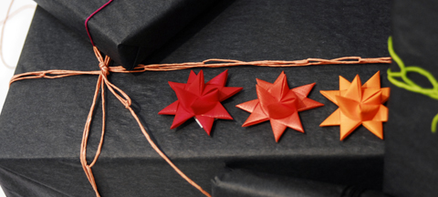 PaperPhine at the Formland Fair - Wrapping ideas with Paper Stars by Stjernestunder