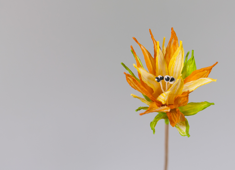 PaperPhine Paperflower PaperTwine Flower Orange Paperyarn